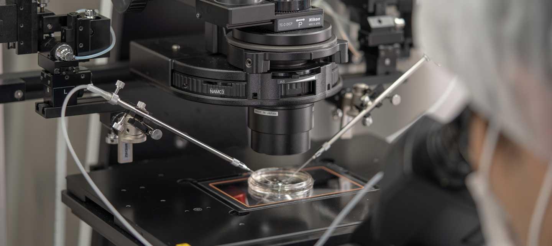 PGT-A(着床前胚染色体異数性検査)写真